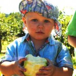 baby-boy-eating-apple