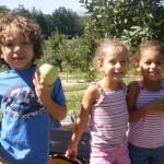 children-picking-apples
