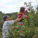 dad-daughter-apple-picking