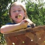 girl-having-fun-picking-apples