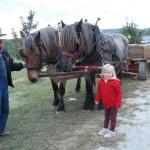 horse-drawn-wagon-ride