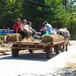 horse-drawn-wagon-ride3