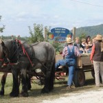 horse-drawn-wagon-ride4
