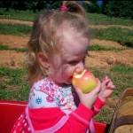 little-girl-eating-apple