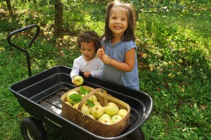 Girls picking NC Apples