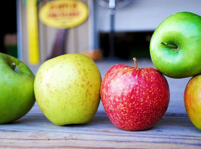 North Carolina Apple Varieties